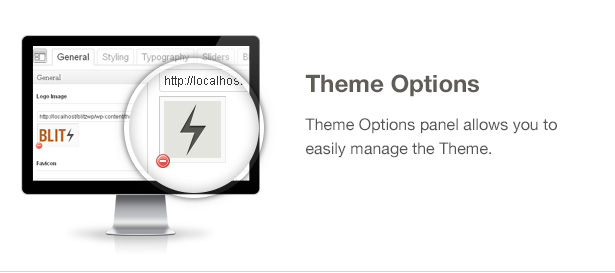 Blitz Theme Features: Theme Options